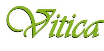 Vitica-Logo.jpg