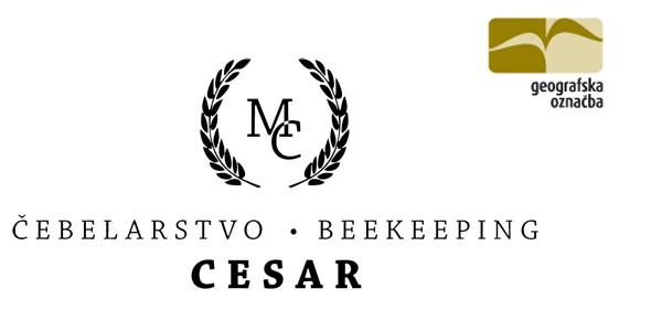 Cesar-logo.jpg