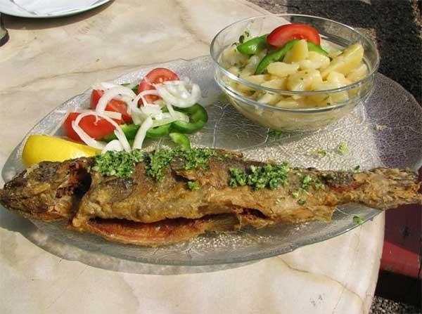 bar Vili food