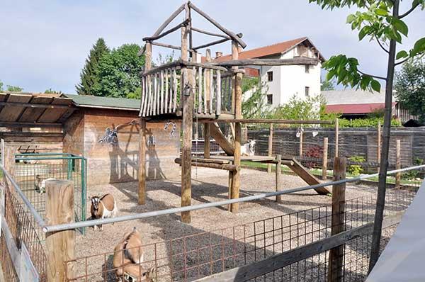 mini zooland farm