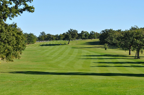 lipica golf