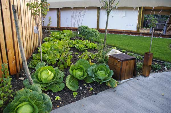 Garden-village-garden