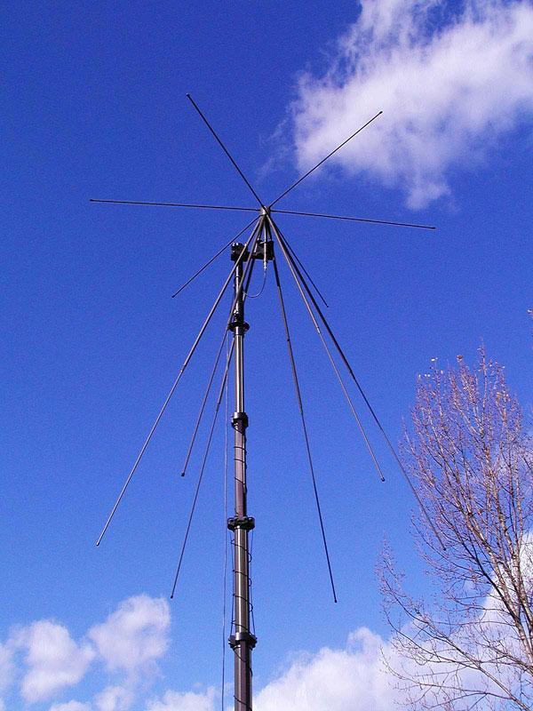 trival antene
