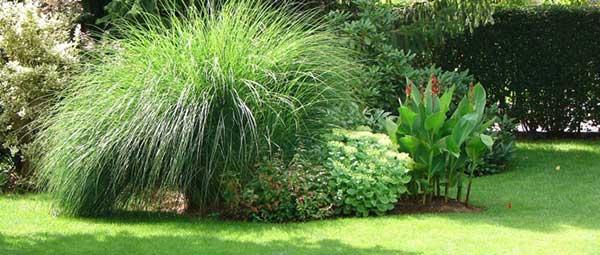 unichem Garden and Lawn